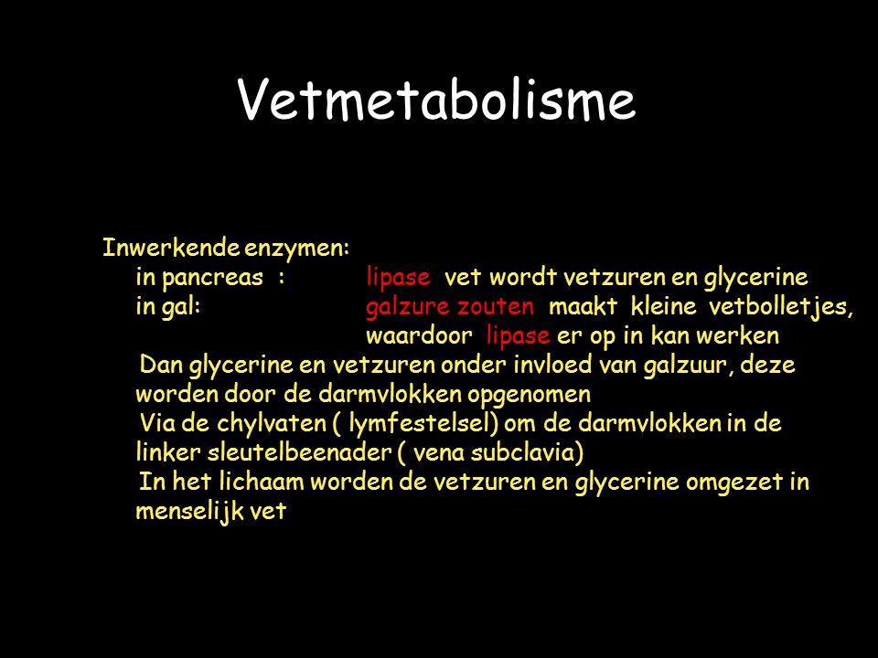 Vetmetabolisme Inwerkende enzymen: