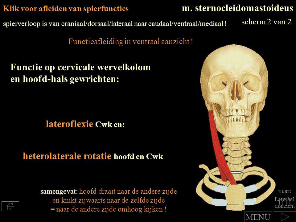 heterolaterale rotatie hoofd en Cwk