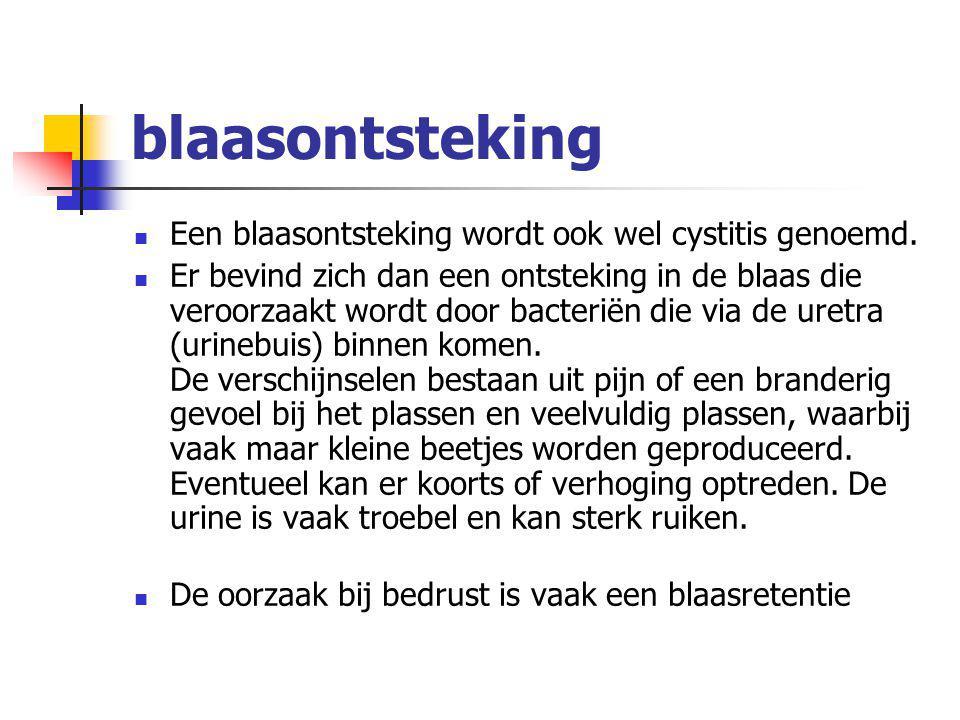 blaasontsteking Een blaasontsteking wordt ook wel cystitis genoemd.