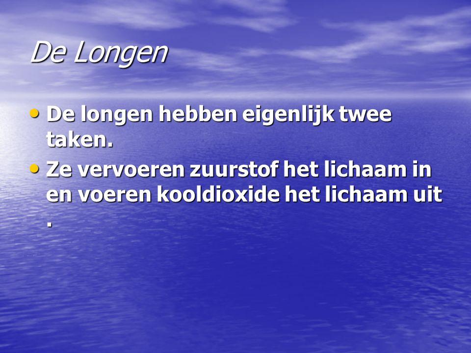 De Longen De longen hebben eigenlijk twee taken.