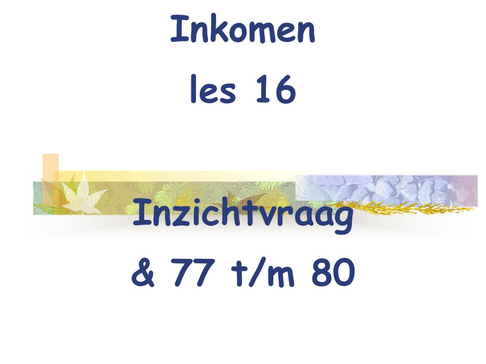 Inkomen les 16 Inzichtvraag & 77 t/m 80