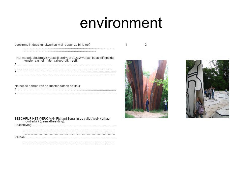 environment Loop rond in deze kunstwerken wat roepen ze bij je op ………………………………………………………………………………………………………………………………………………