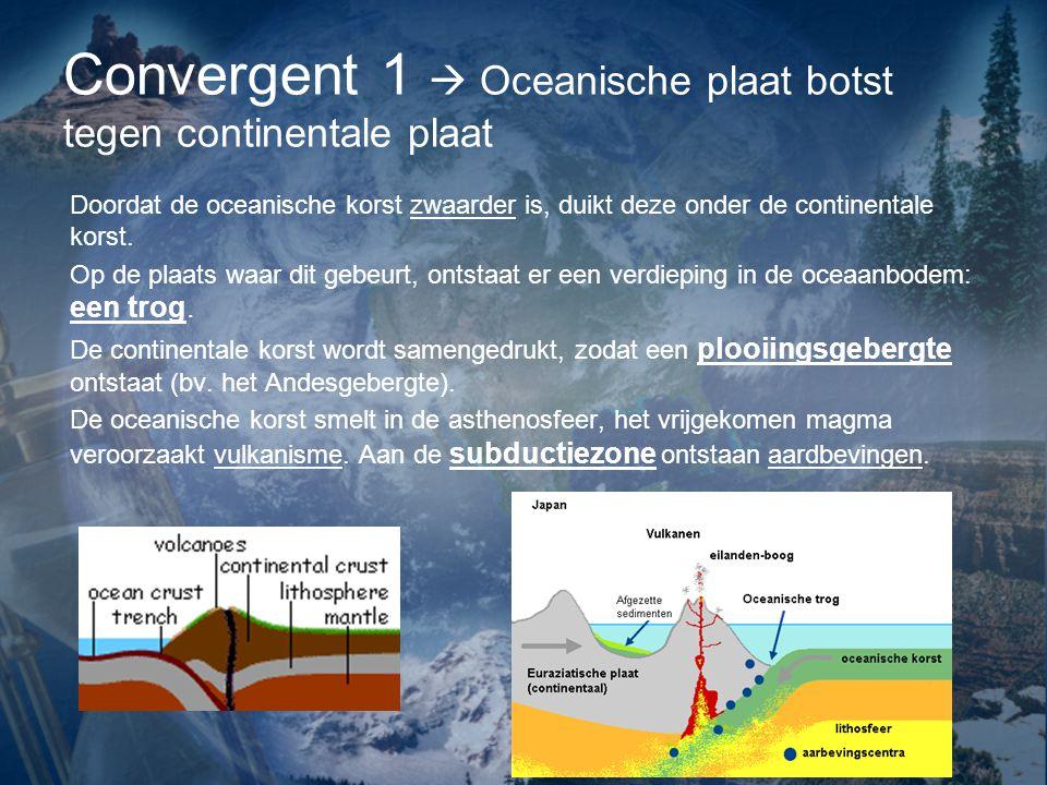 Convergent 1  Oceanische plaat botst tegen continentale plaat