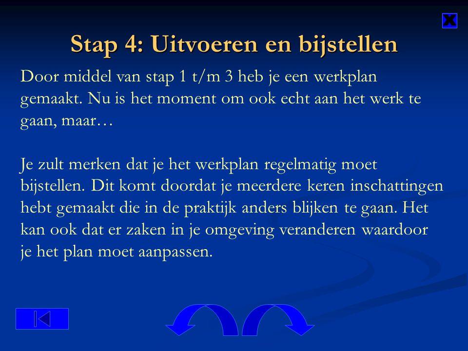 Stap 4: Uitvoeren en bijstellen