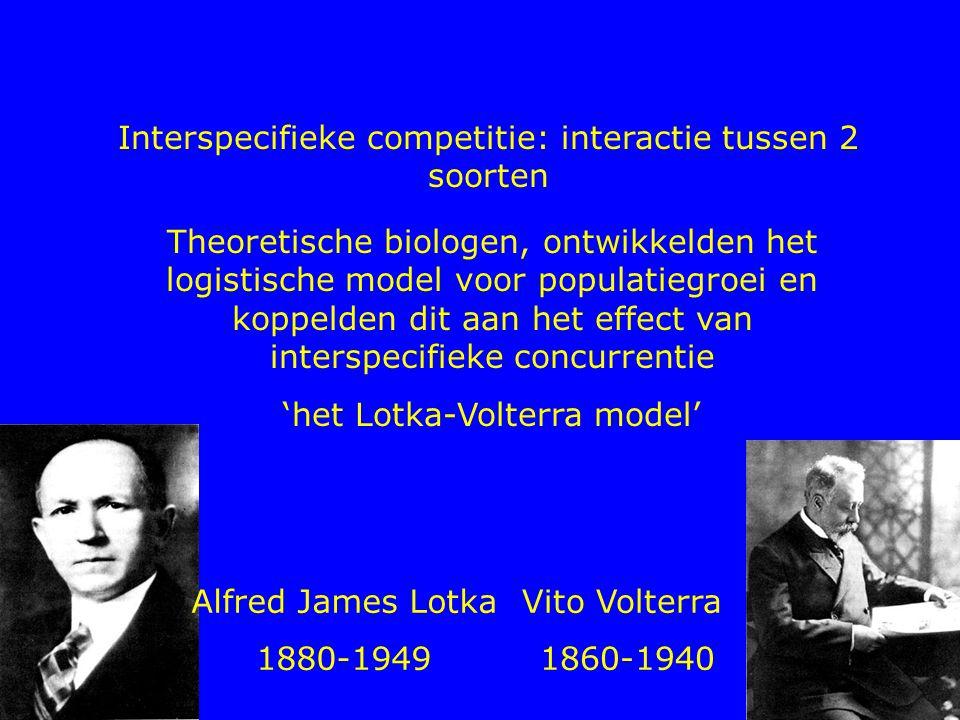 Interspecifieke competitie: interactie tussen 2 soorten