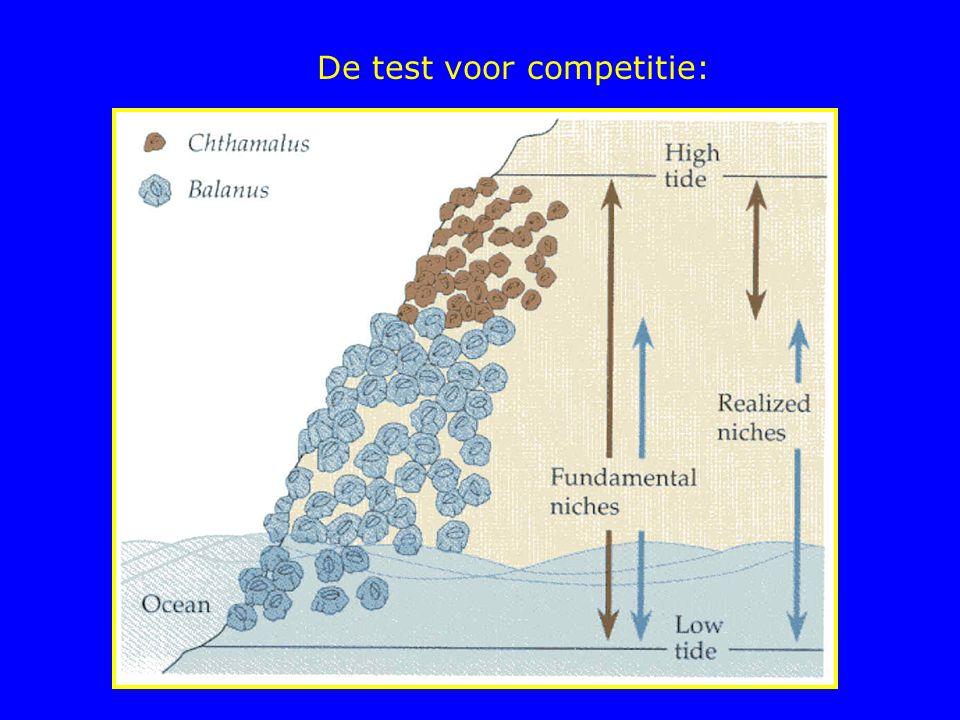 De test voor competitie: