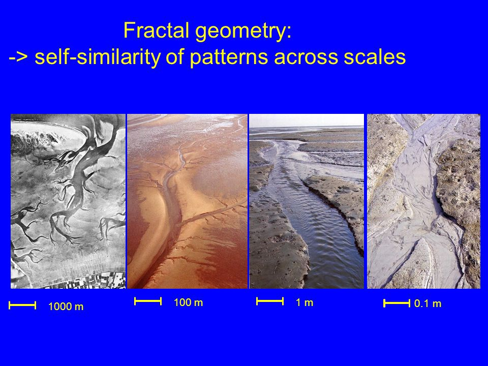 Fractal geometry: -> self-similarity of patterns across scales