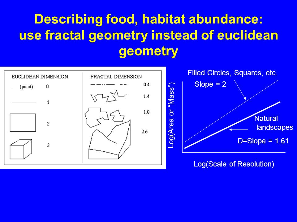 Describing food, habitat abundance: use fractal geometry instead of euclidean geometry