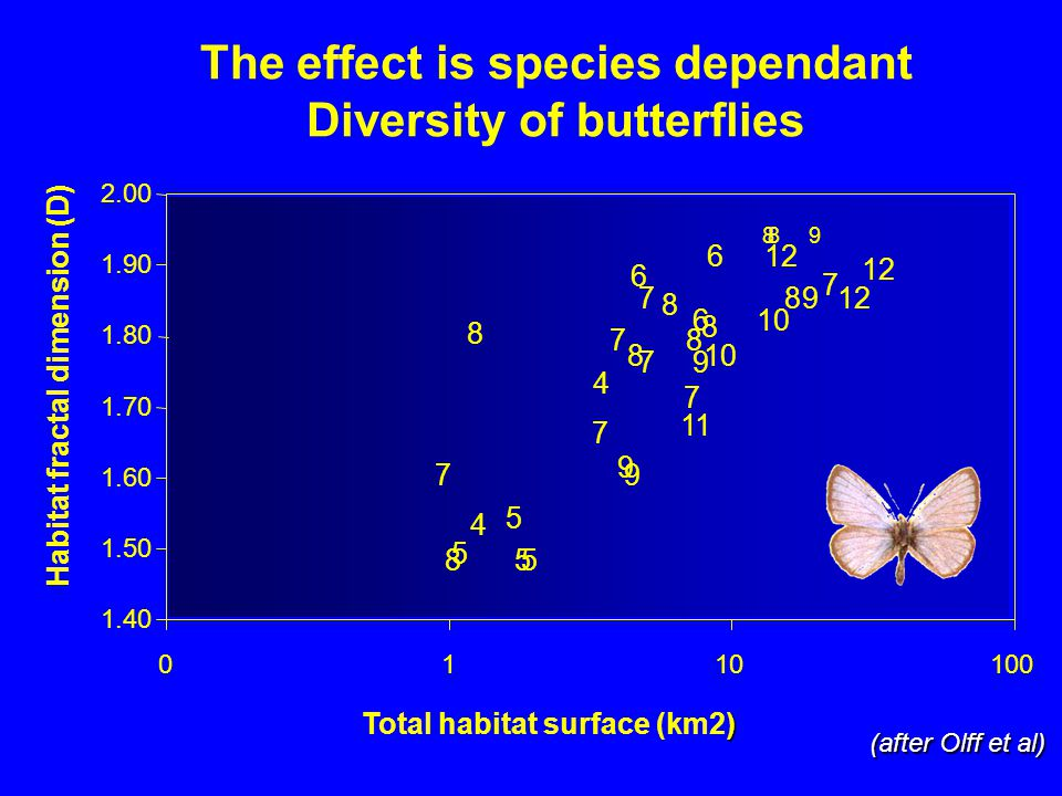 The effect is species dependant Diversity of butterflies