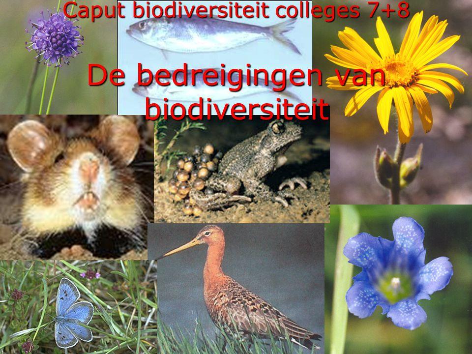 Caput biodiversiteit colleges 7+8 De bedreigingen van biodiversiteit