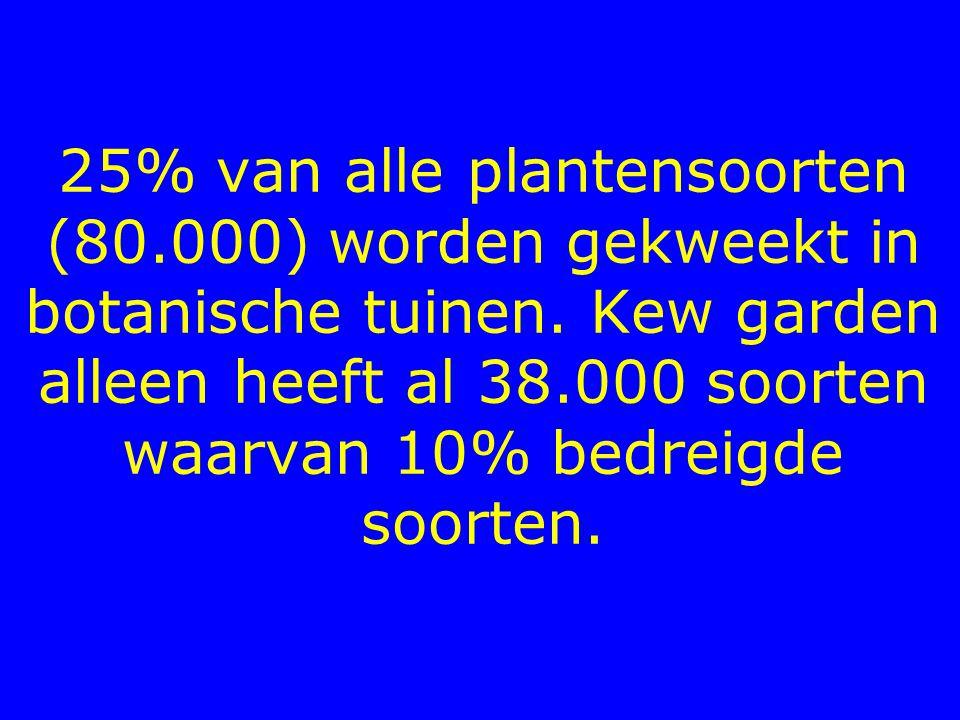 25% van alle plantensoorten (80