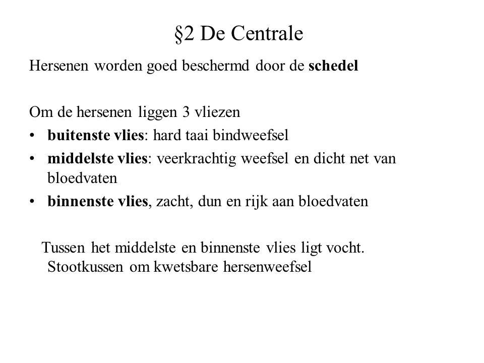 §2 De Centrale Hersenen worden goed beschermd door de schedel