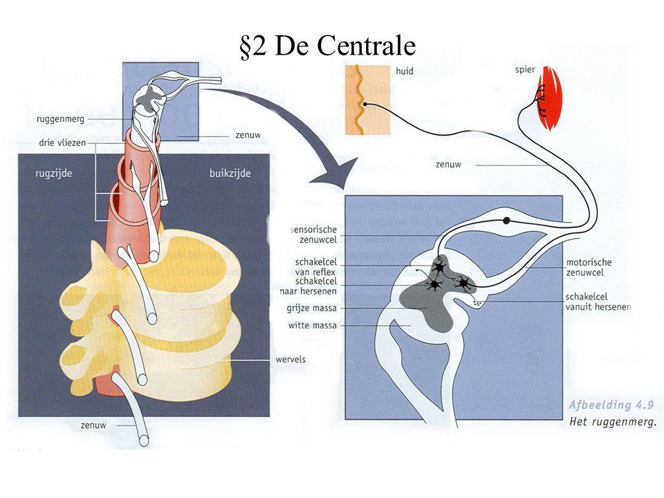 §2 De Centrale