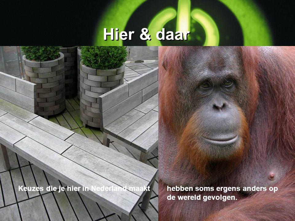 Hier & daar Keuzes die je hier in Nederland maakt
