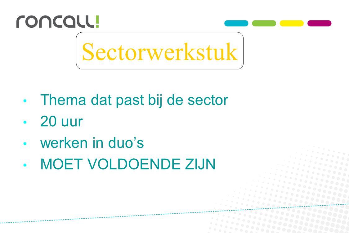 Sectorwerkstuk Thema dat past bij de sector 20 uur werken in duo's