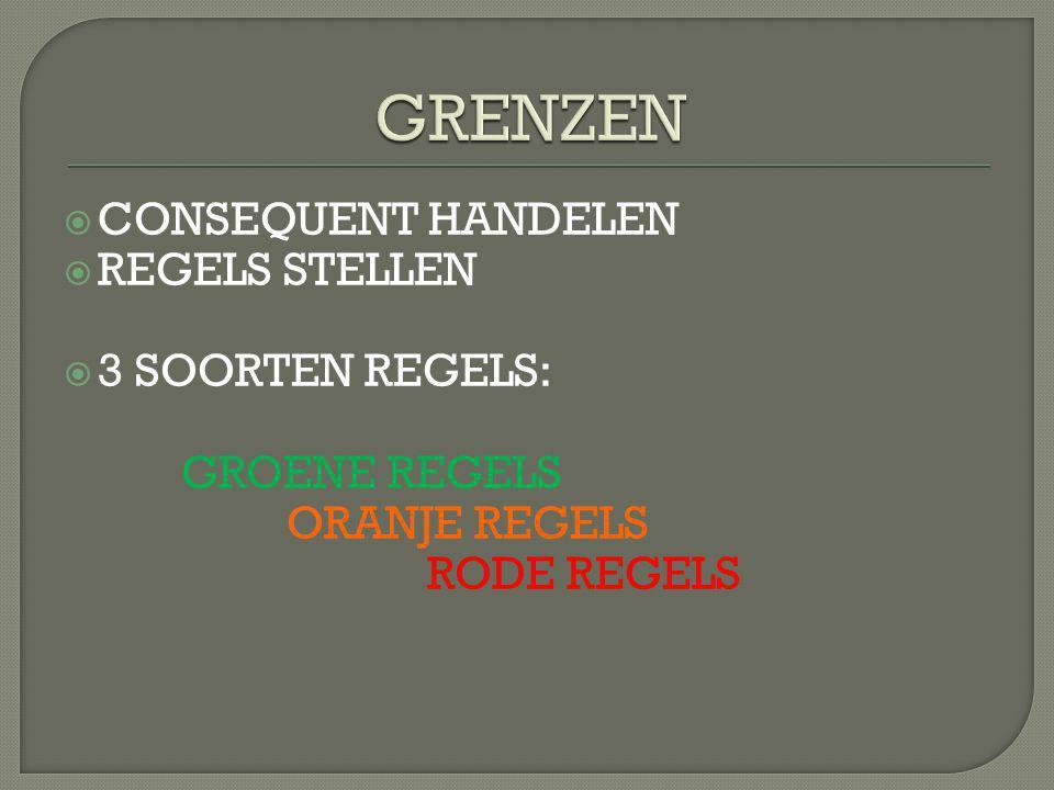 GRENZEN CONSEQUENT HANDELEN REGELS STELLEN 3 SOORTEN REGELS: