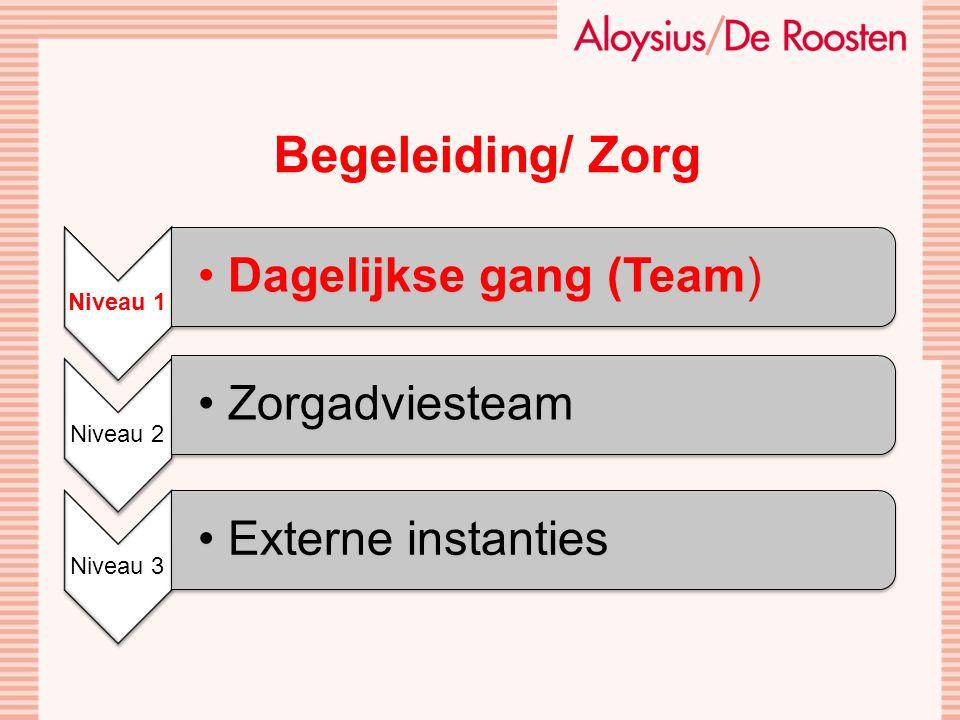 Begeleiding/ Zorg Dagelijkse gang (Team) Zorgadviesteam