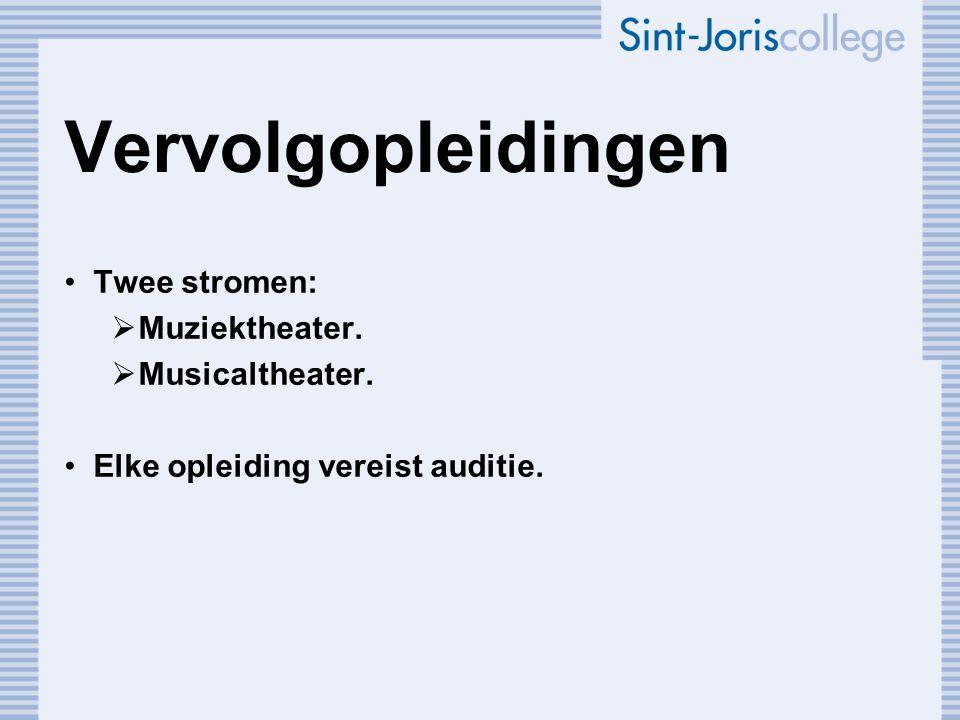Vervolgopleidingen Twee stromen: Muziektheater. Musicaltheater.