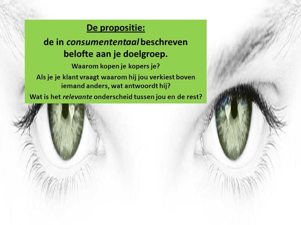 de in consumententaal beschreven belofte aan je doelgroep.