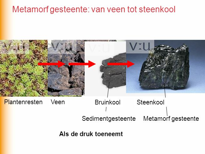 Metamorf gesteente: van veen tot steenkool