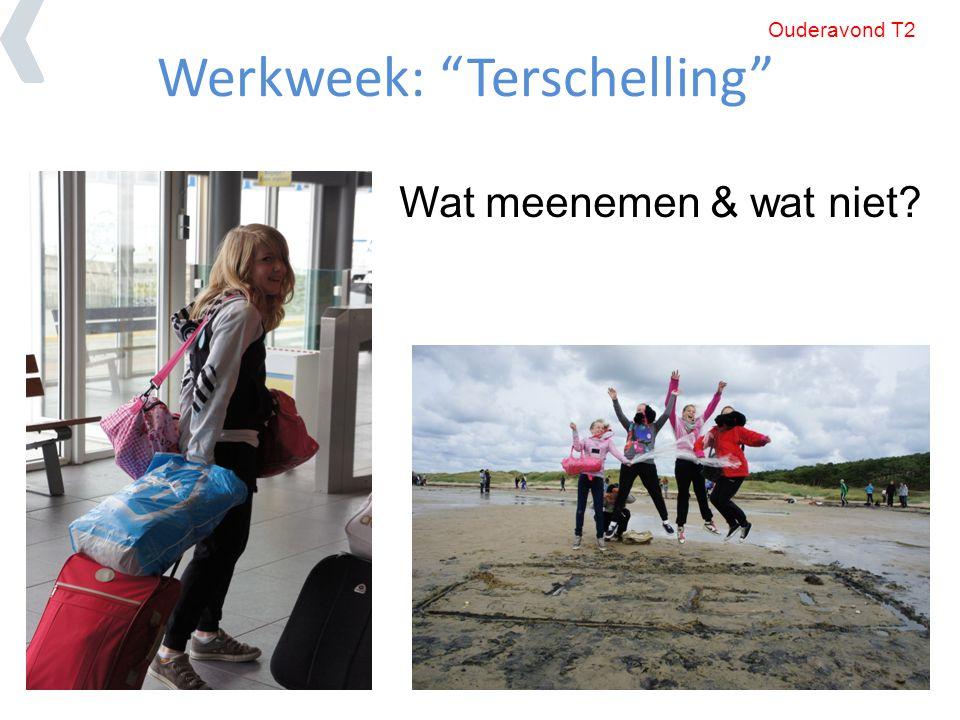 Werkweek: Terschelling