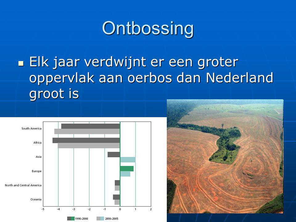 Ontbossing Elk jaar verdwijnt er een groter oppervlak aan oerbos dan Nederland groot is