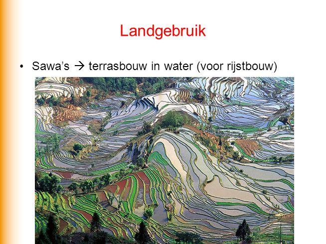 Landgebruik Sawa's  terrasbouw in water (voor rijstbouw)