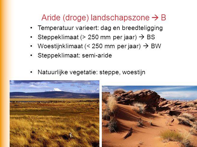 Aride (droge) landschapszone  B