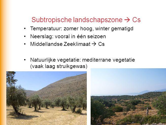 Subtropische landschapszone  Cs