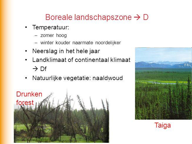 Boreale landschapszone  D
