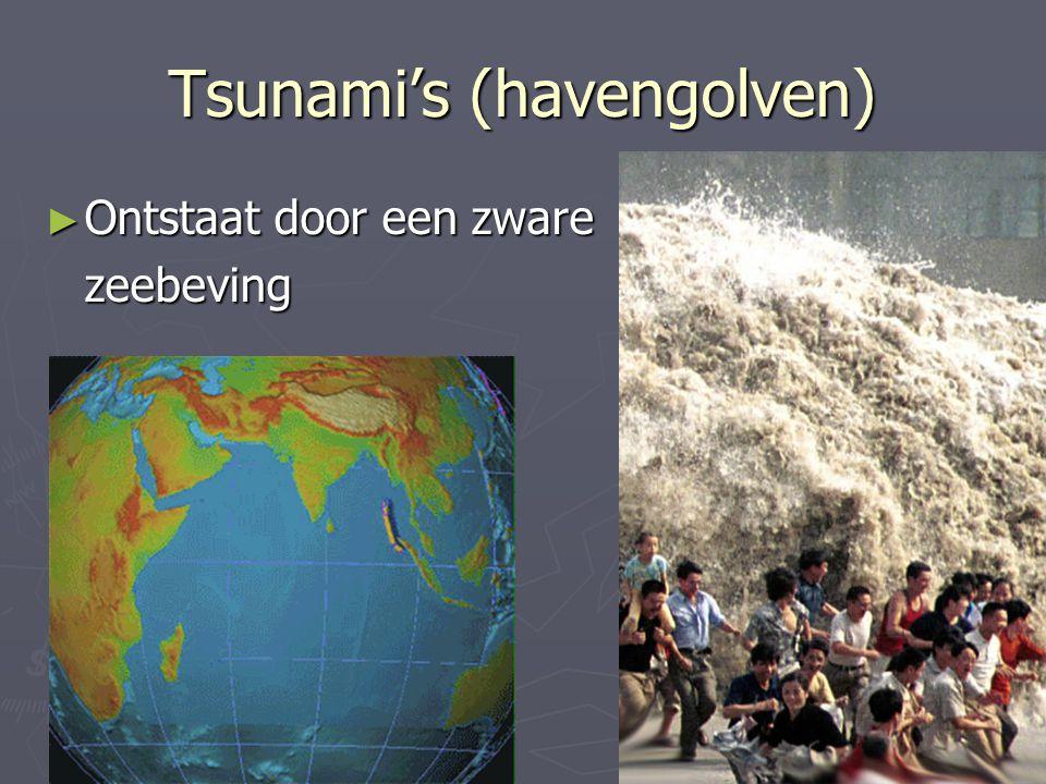 Tsunami's (havengolven)