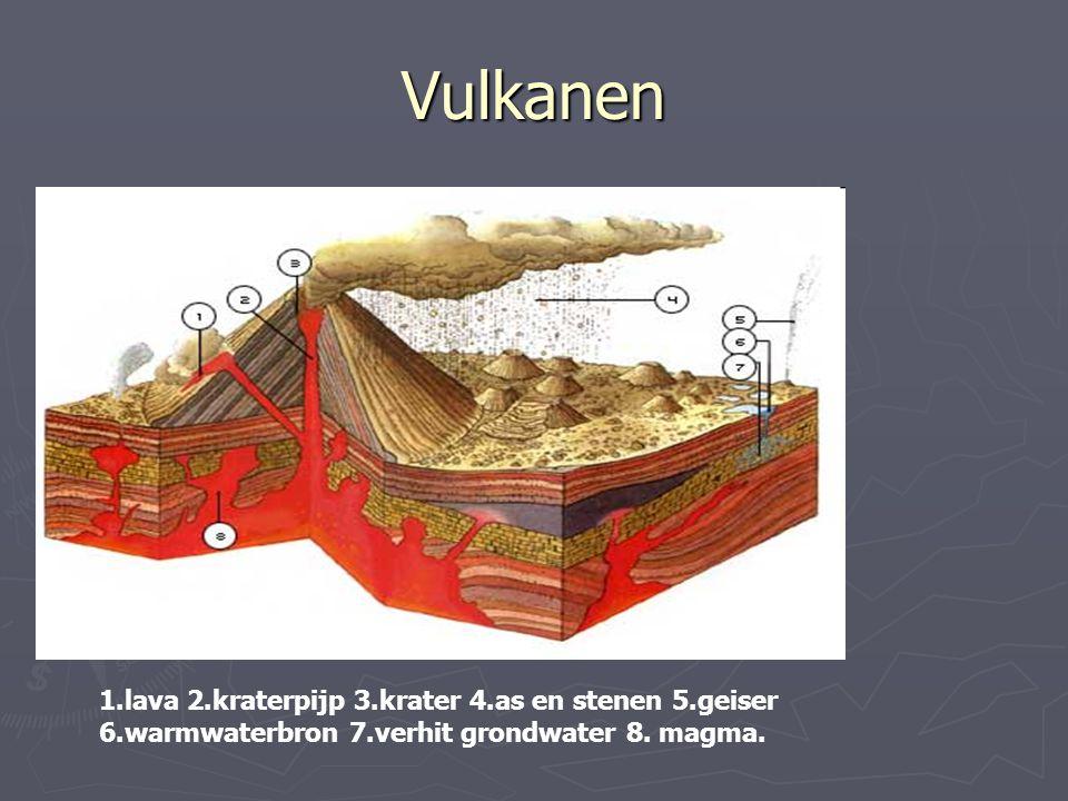 Vulkanen 1.lava 2.kraterpijp 3.krater 4.as en stenen 5.geiser