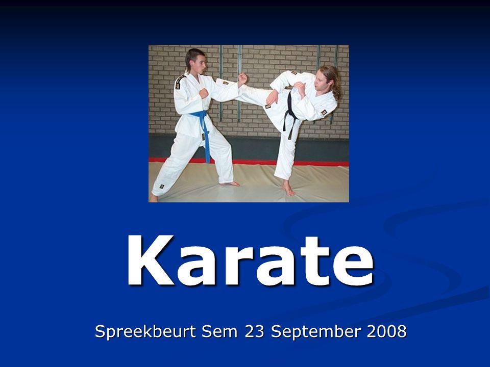 Spreekbeurt Sem 23 September 2008