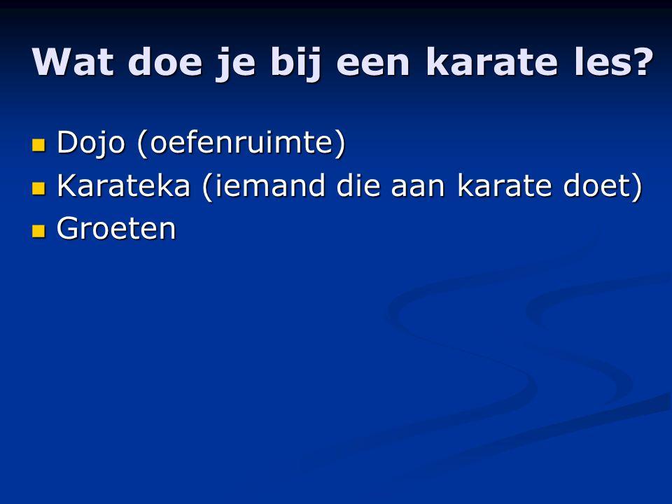 Wat doe je bij een karate les