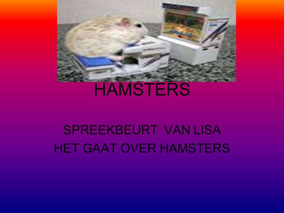 SPREEKBEURT VAN LISA HET GAAT OVER HAMSTERS