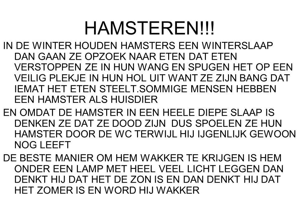 HAMSTEREN!!!