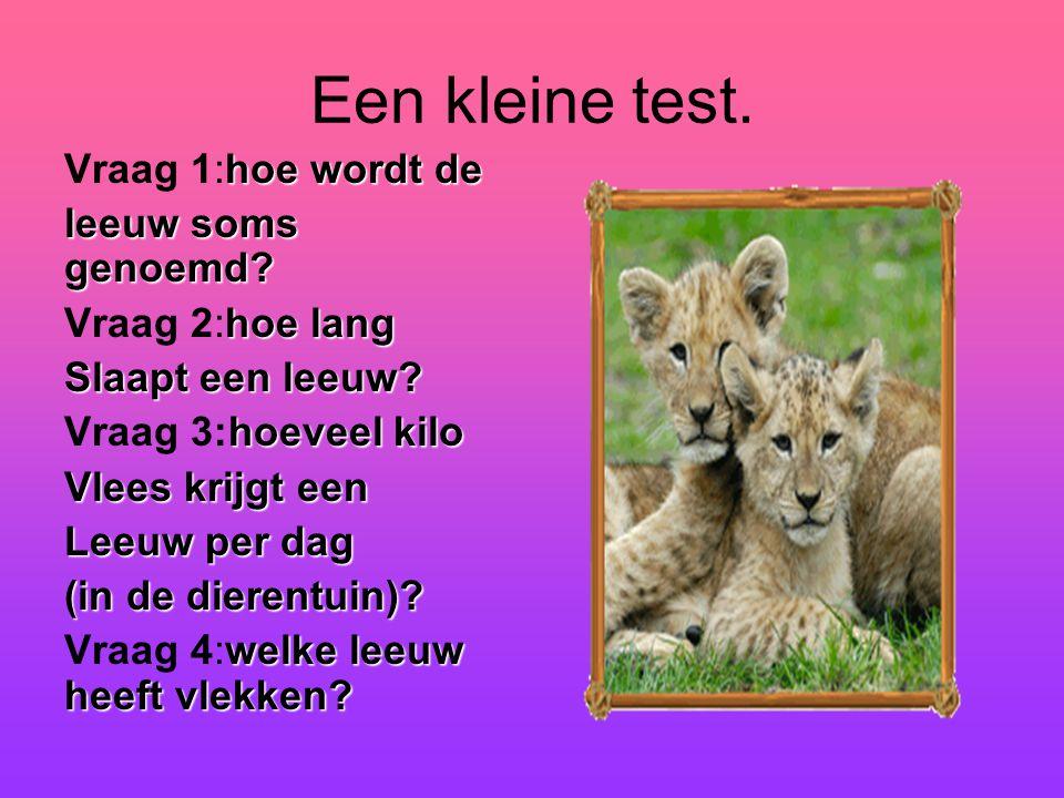 Een kleine test. Vraag 1:hoe wordt de leeuw soms genoemd