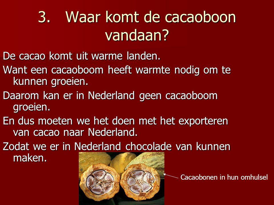 3. Waar komt de cacaoboon vandaan