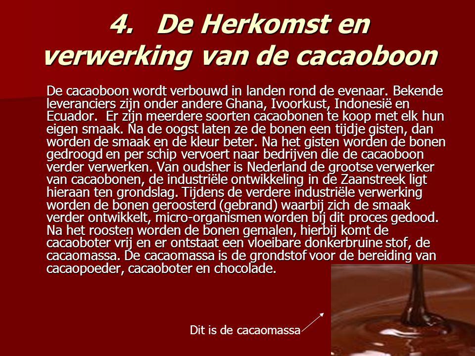 4. De Herkomst en verwerking van de cacaoboon