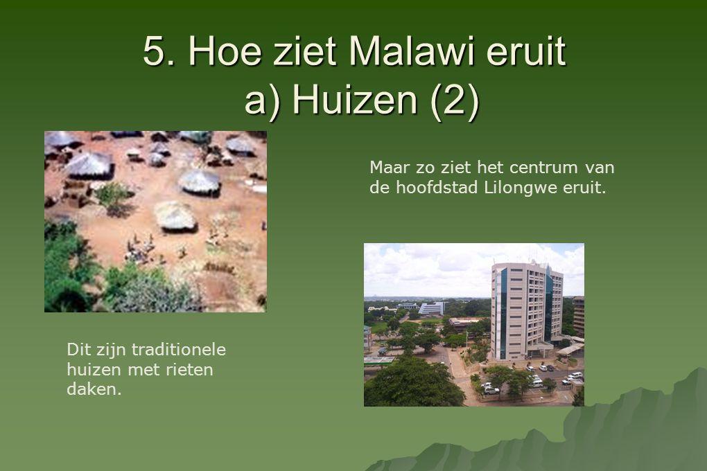 5. Hoe ziet Malawi eruit a) Huizen (2)