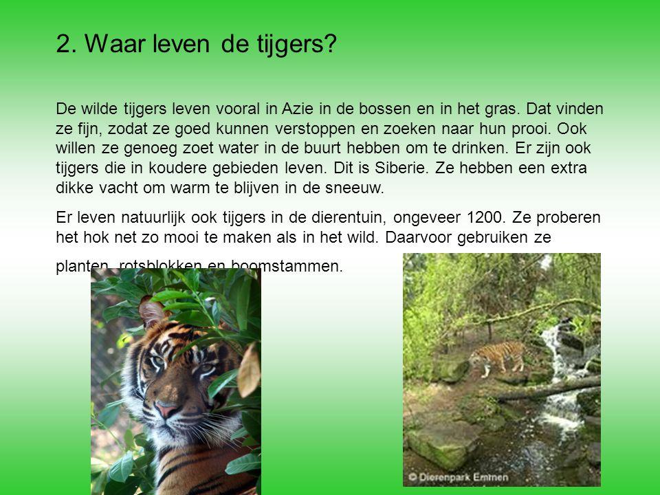 2. Waar leven de tijgers