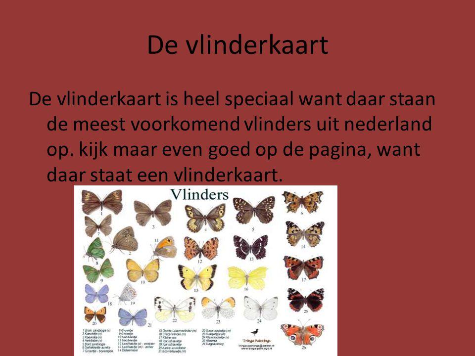 De vlinderkaart