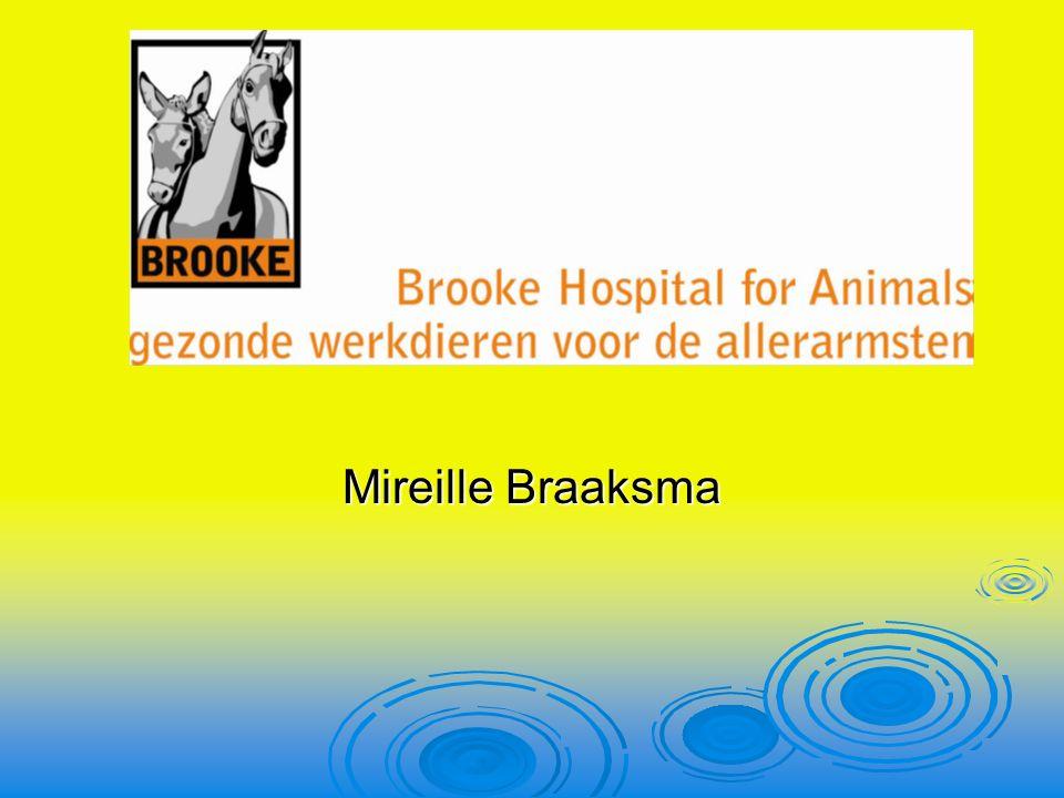 Mireille Braaksma