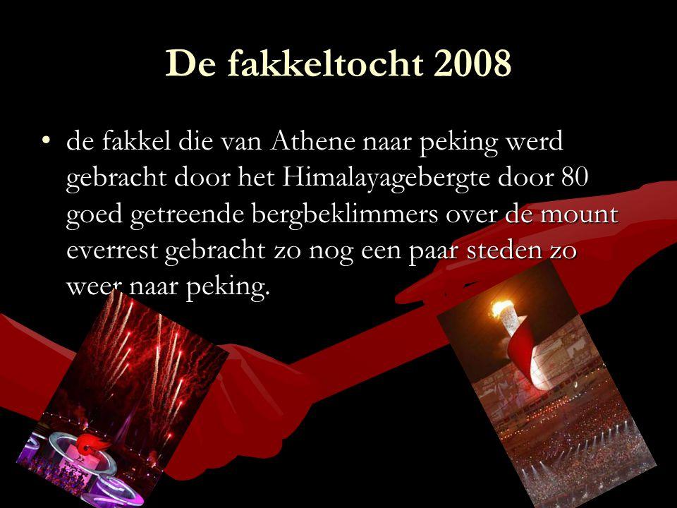 De fakkeltocht 2008