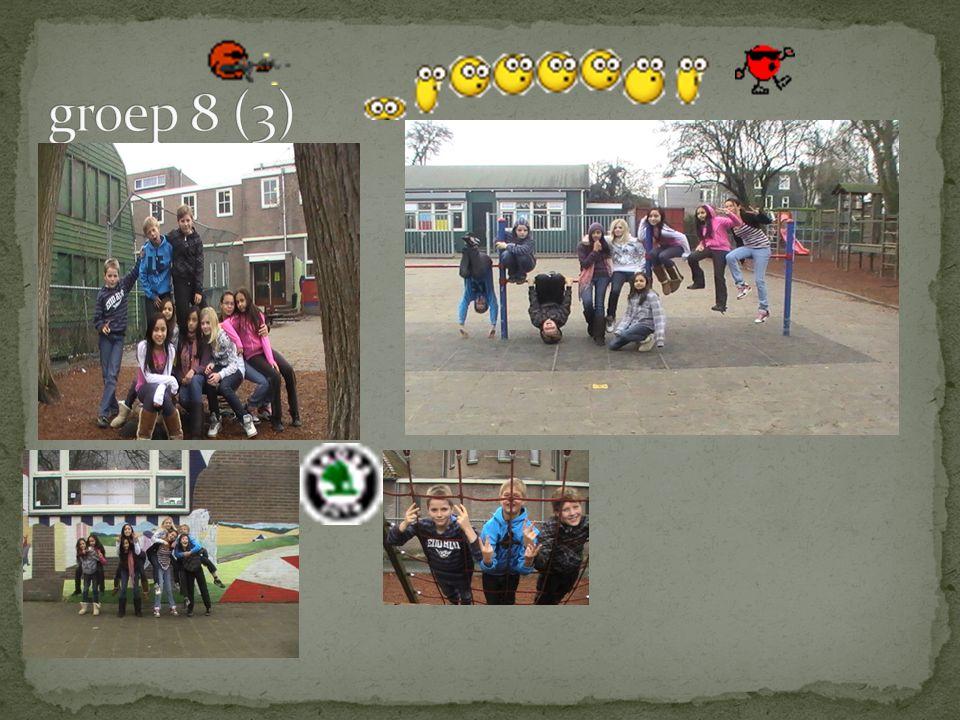 groep 8 (3)