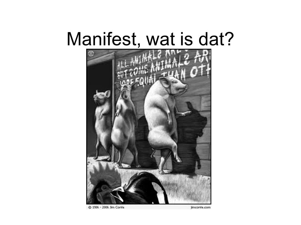 Manifest, wat is dat