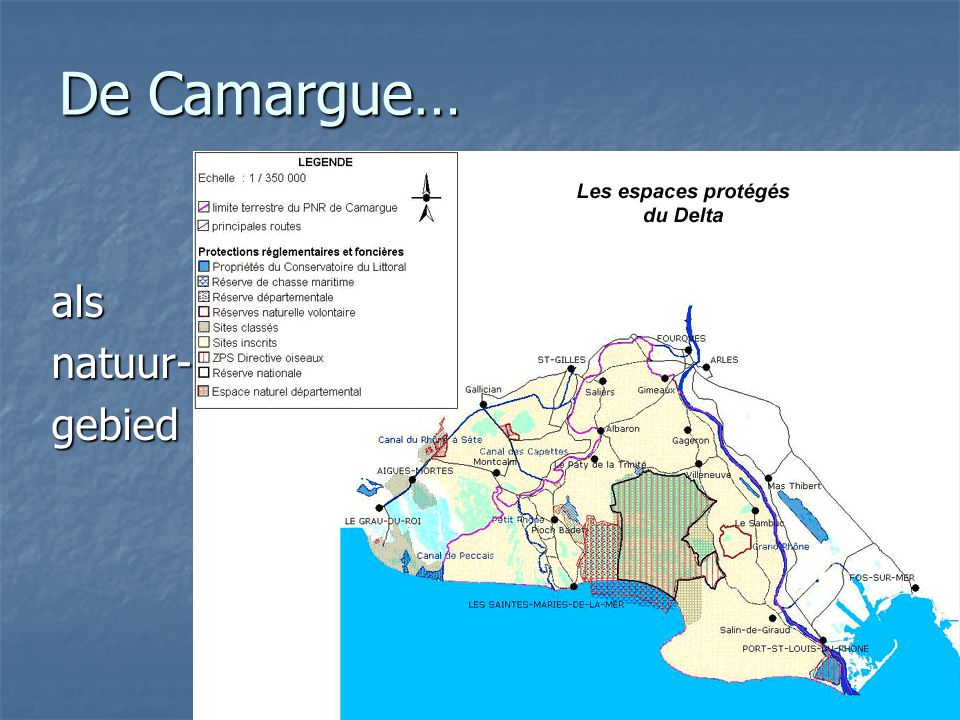 De Camargue… als natuur- gebied