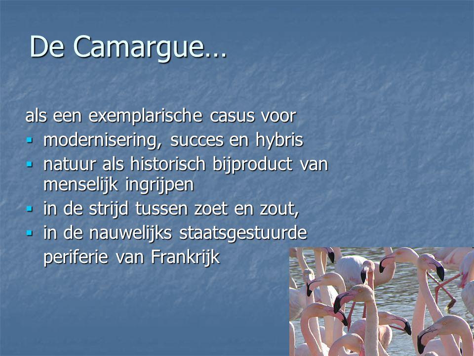 De Camargue… als een exemplarische casus voor