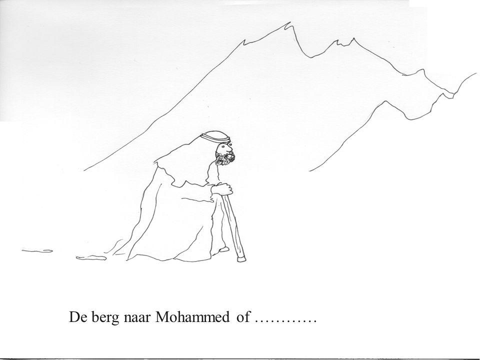 De berg naar Mohammed of …………