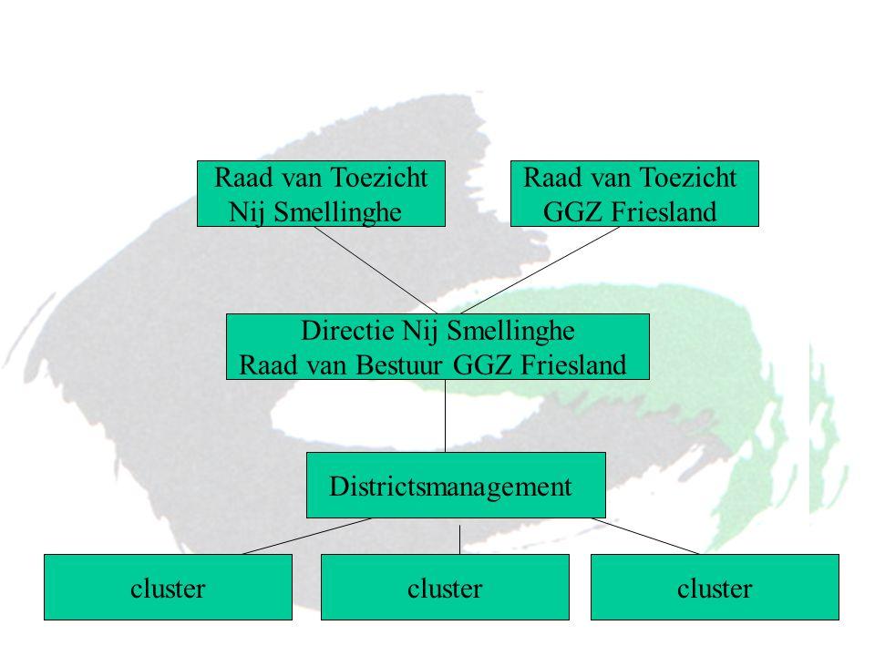 Directie Nij Smellinghe Raad van Bestuur GGZ Friesland